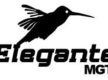 Elegante Mgt