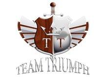 Team Triumph Inc.