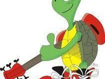 Turtle Productions
