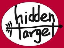 Hidden Target Recordings