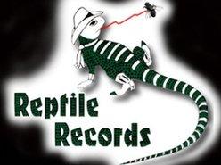 Reptile Records