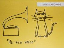 Tierra Records