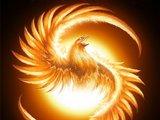1403874570 chinese phoenix5