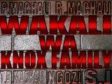 1391793974 wakali2