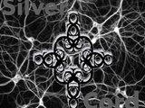 1374772881 silver cord logo