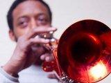 1340943164 roze trumpet