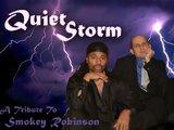 1308552110 quietstorm2