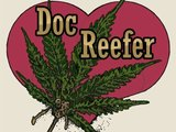 1310428668 doc reefer by nicky large