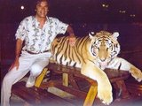 1383649664 the tiger