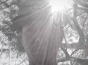 Element Da Sun