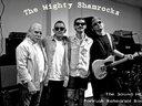 The Mighty Shamrocks 2012 rehearsing at the Soundhole, Portrush