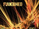 Flanelhed Static CD cover