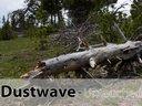 Dustwave