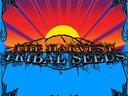 Tribal Seeds - The Harvest (2009)