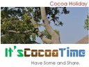 The Cocoa Things to Think About