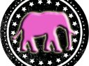 The 5th Elephant