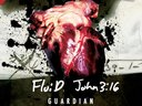 1359420637 fluid john 3 16 guardian