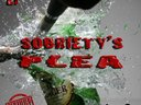 1361151019 sobriety s plea
