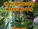 Omnispheric Sound Scapes Cover