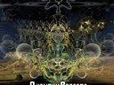 Quantum Effects - Liquid Records
