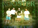 FIVE LIVE 3RD RELEASE ROOSTER