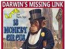 13 Monkey Circus Poster