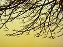 I Love Clicking Nature's Beauty!