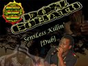"""SensLess Killin' [Dub]"" by Don Goliath ft. Ras Khaleel"