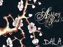 Solo release, Dala