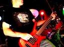 Fred Bogen (Bass)
