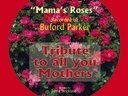 Mama's Roses recorded by Buford Parker, tribute to all mothers