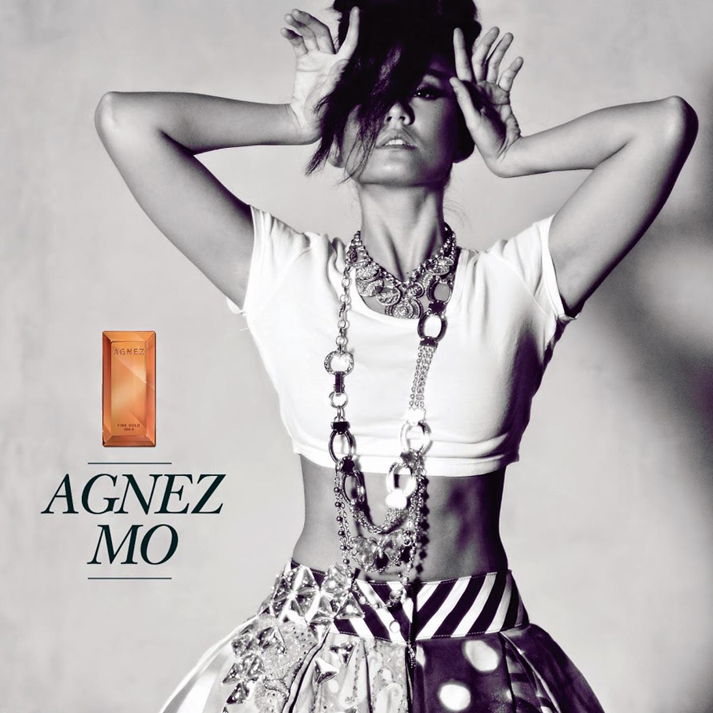 Image result for Agnes Monica Muljoto