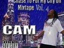 Cam city4 copy 1299436267