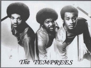 Image result for the temprees