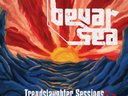 Bevar Sea - the Trendslaughter Sessions