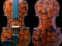1305501161 violin  flower