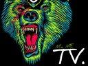 1325119013 micme tv bear