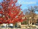 Bronson Park in Kalamazoo, Mi