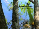 """After The Forest - """"All The Way In"""" (3rd Album)"""