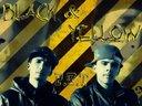 black & yellow FDALA SYSTEM MIX