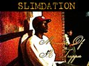 1329423845 slimdationmemoirs album cover