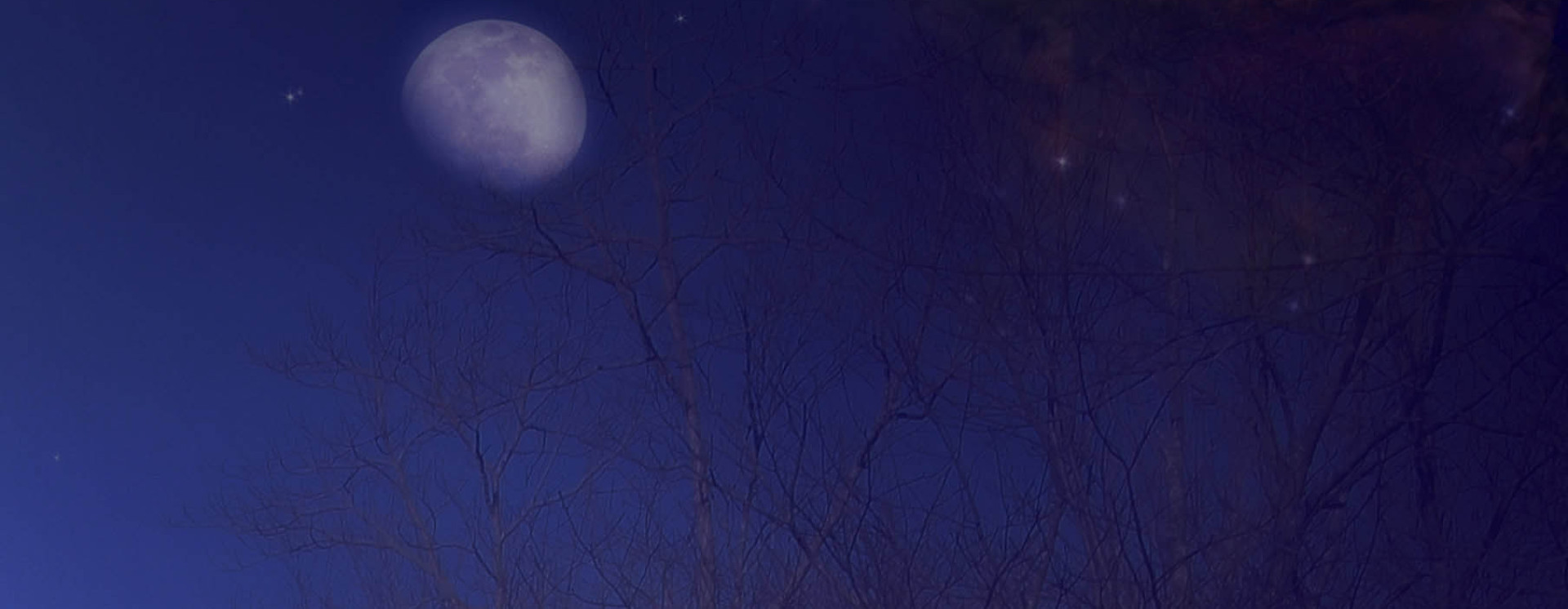 1391575274 art ificial night copy
