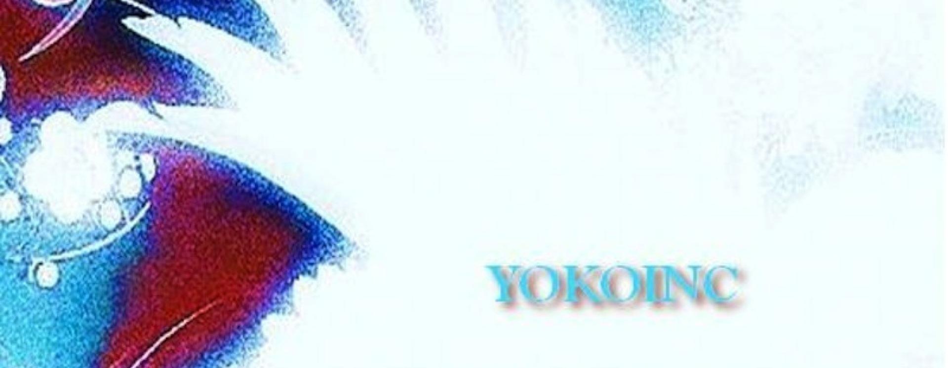1425970225 yokoinc front cover copy