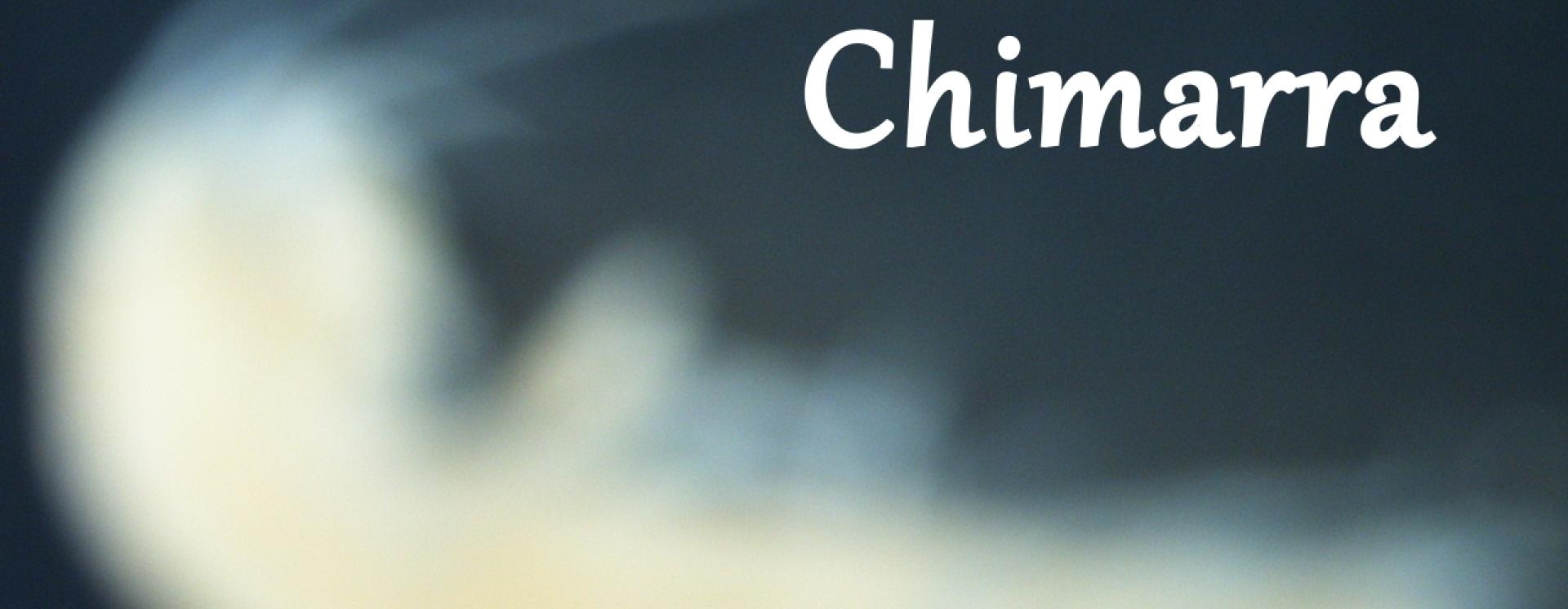 1444537956 chimarra sticker copy