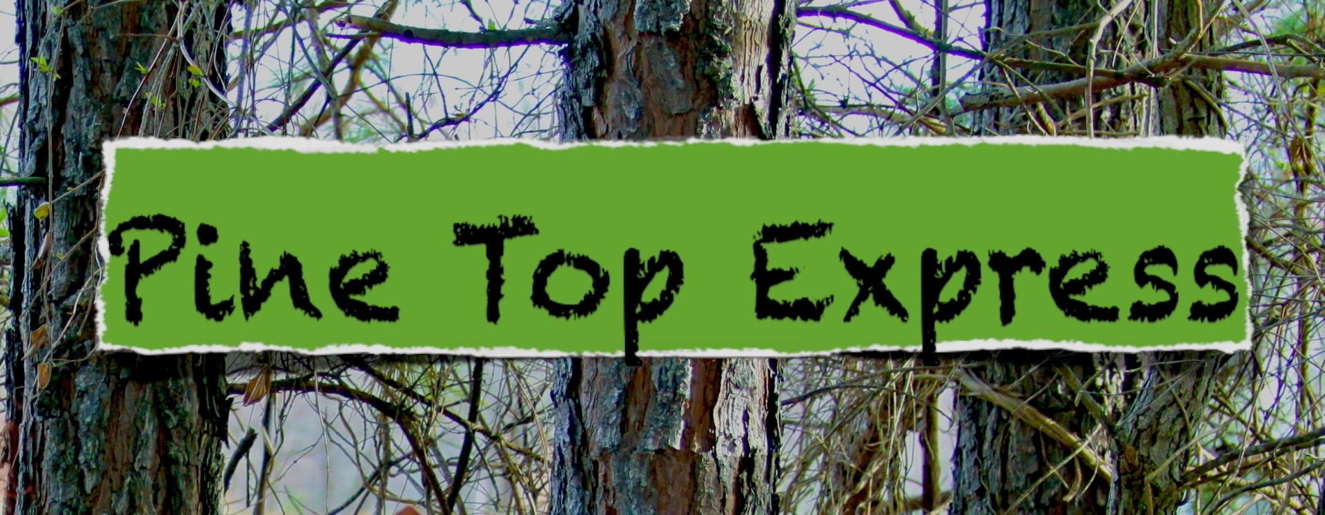 1396592670 pine top express copy