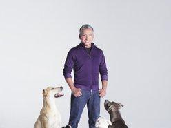 Image for Cesar Millan: The Dog Whisperer