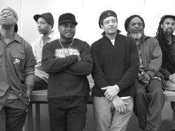 Image for International Reggae Allstars