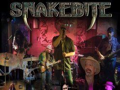 Image for Snakebite