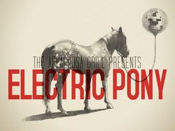 Image for Electric Pony