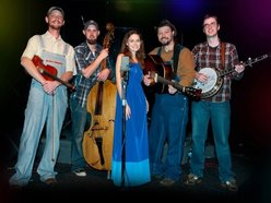 Image for The Hillbilly Gypsies